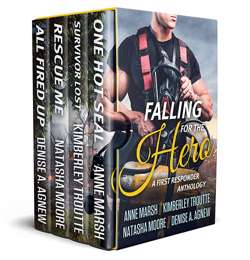 Falling-for-the-Hero-Box-Set-sm